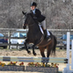 LIU Post Equestrian Club