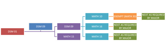 Mathematics Placement Sequence