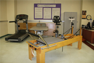 LIU Brooklyn Department of Physical Therapy Research Lab