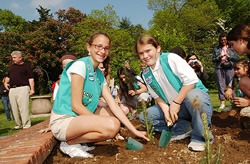 Girl Scouts Celebrate 95th Anniversary by Planting 95 Trees at C.W. Post