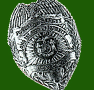 Public Safety Officer's Badge