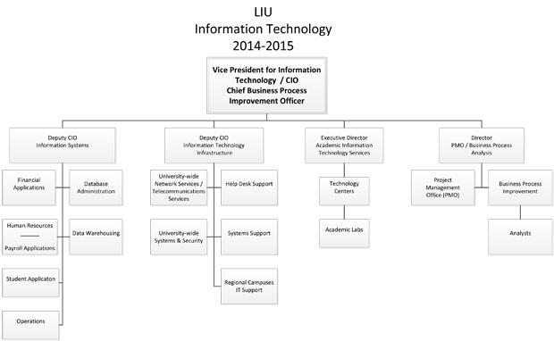LIU IT Organization Chart - Long Island University